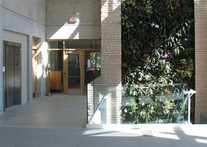 The living wall purifies the air of the narthex and worship space, reminding parishioners of the importance of rainforests and their own baptismal covenants.