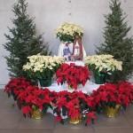 2008_Christmas_2