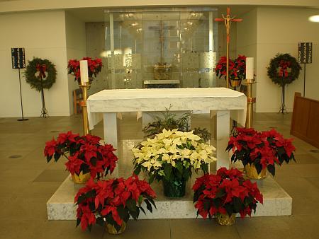 2008_Christmas_4
