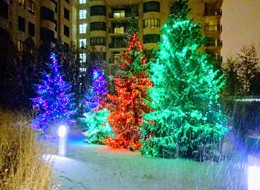 christmas_lights_2017