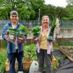 1st 2021 Harvest Lance & Marie Noelle