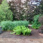new_area_south_garden